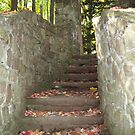 Stone Steps at Chestnut Ridge by Marcia Plante
