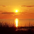 Sunset on Cape Cod by Marcia Plante