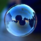 Evening Bubble by Rachel Leigh