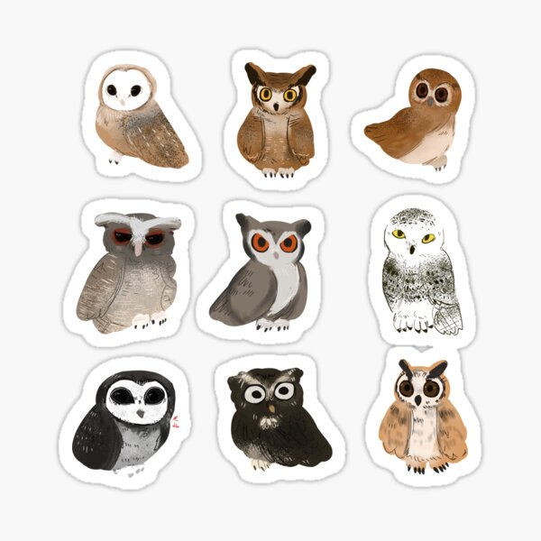 All different kinds of hoots!  Sticker