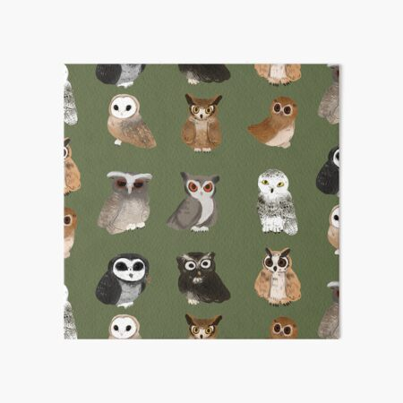 All different kinds of hoots!  Art Board Print