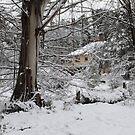 Blackheath in Heavy Snow by Geoff Smith