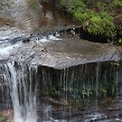 Weeping Rock by Geoff Smith