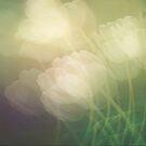 Petals in the wind by Angela King-Jones
