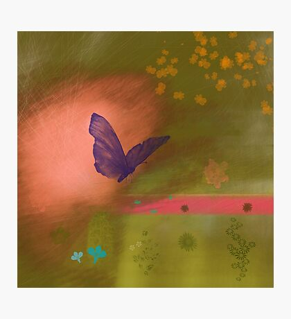 Butterfly fields Photographic Print