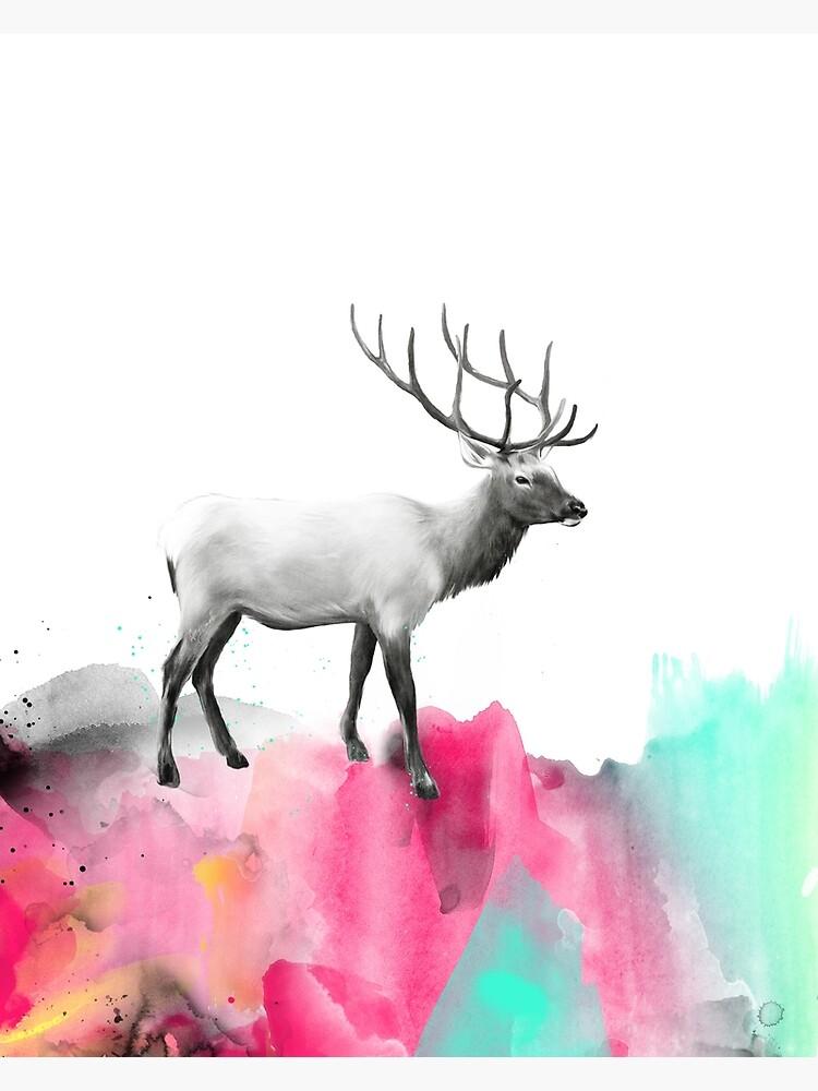 Wild No.2 // Elk by AmyHamilton
