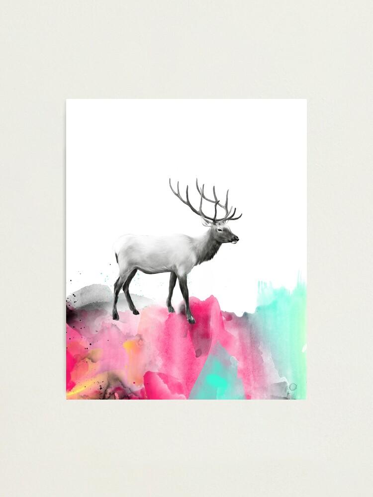 Alternate view of Wild No.2 // Elk Photographic Print
