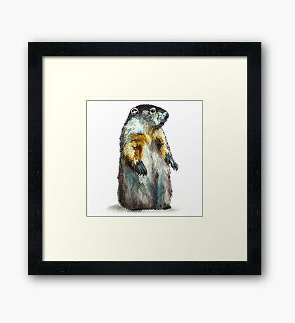 Winter Woodchuck (aka Groundhog) Framed Print
