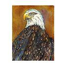 Bald Eagle by Lynn Oliver