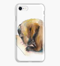 Curled up Baby Groundhog iPhone Case/Skin