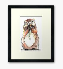 Dinky the Groundhog Framed Print