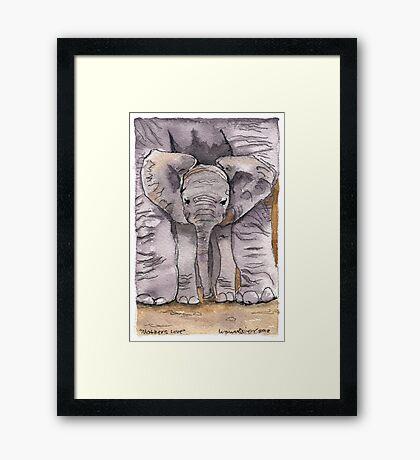 Elephant Mother's Love Framed Print