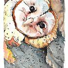Barn Owl by Lynn Oliver