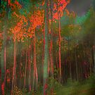 Autumn in the Magic Forest by mimulux