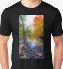Autumn At Petrifying Springs T-Shirt