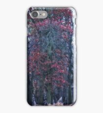 Faerie Trees ~ Fairy Trees With Inner & Outer Border  iPhone Case/Skin