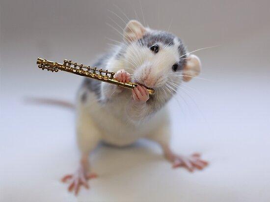 Trying to play the flute by Ellen van Deelen