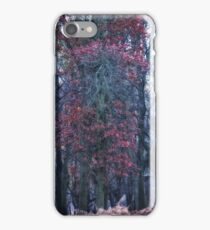 Faerie Trees ~ Fairy Trees With No Blurred Background iPhone Case/Skin