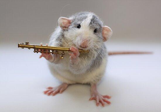 I really can play :) by Ellen van Deelen
