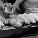 Grilled Corn on the Cobs by the-novice