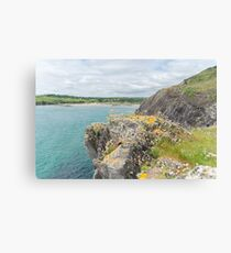 The Warren, Rosscarbery West Cork Canvas Print