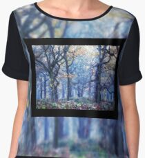 The Enchanted Forest Landscape with Single border Women's Chiffon Top
