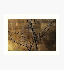In the light of an autumn morning Art Print