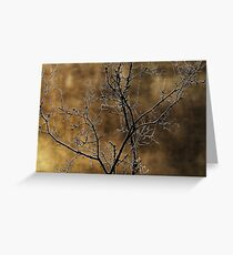 In the light of an autumn morning Greeting Card