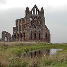 Whitby Abbey, North Yorkshire, UK by AnnDixon