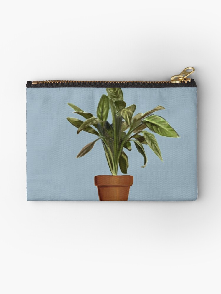 Ficus by rebelshop