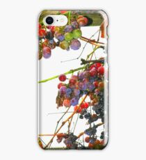 De-Vine iPhone Case/Skin