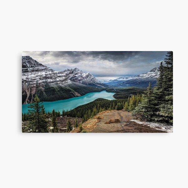 Lake Peyto Canvas Print