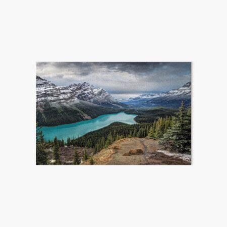 Lake Peyto Art Board Print