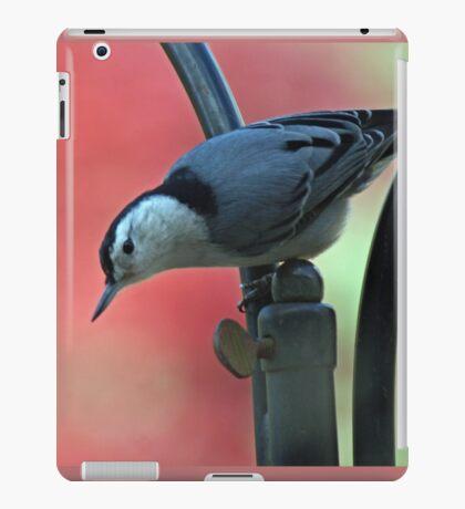 Natty Nuthatch iPad Case/Skin