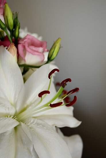 The Bouquet by Carol Bleasdale