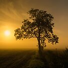 Morning by John Dunbar