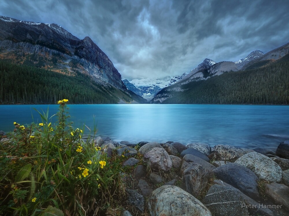 Morning at Lake Louise by Peter Hammer