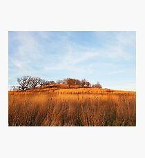 Golden Autumn Savanna Photographic Print