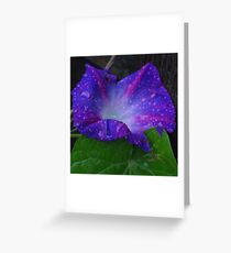Tears for the Morning Greeting Card