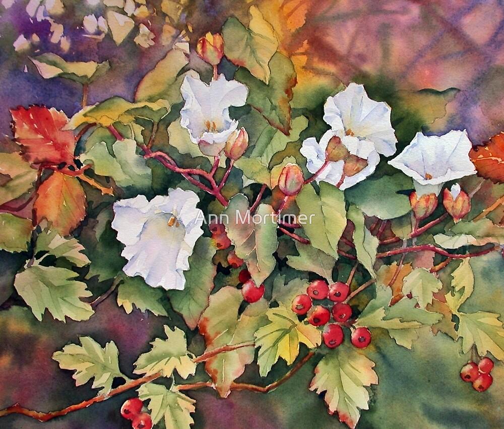 Autumn Glories by Ann Mortimer
