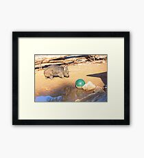 Little Reflection Of Me & My Ball.... Framed Print