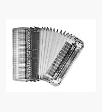 X-ray of an Accordion on white background  Photographic Print