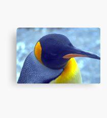 Colorful Penguin Canvas Print