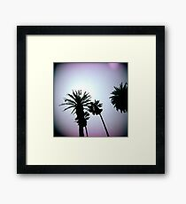 Holga Palms Framed Print
