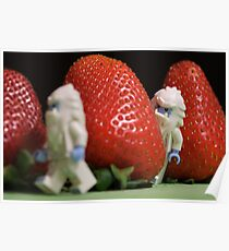 Hide n' Seek in the Strawberry Forest Poster