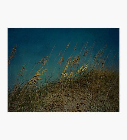 Sea Oats and Storms Photographic Print