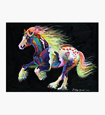Trail Of Hearts Pony Photographic Print