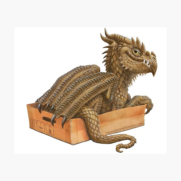 If it fits I sits- Dragon in a Box Photographic Print