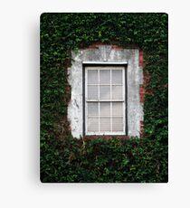 The Ivy Window Canvas Print