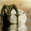 Night Dreams by shalisa